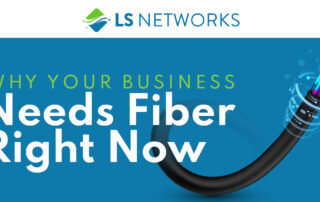 Fiber is the must-have connectivity for businesses that want to grow.